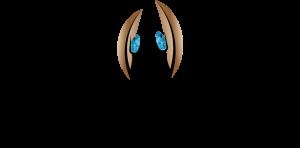 logo - Pol Perspecitve